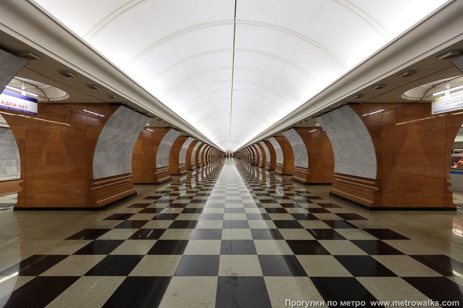 prostitutki-moskvi-metro-frunzenskaya